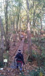 autumn-shooting01