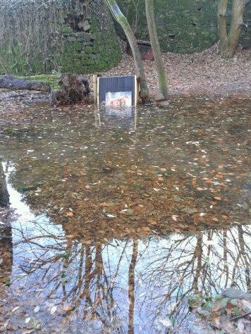 Flooded target