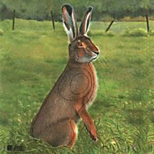 JVD Hare target face