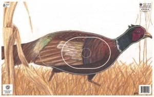 Mapleleaf Pheasant