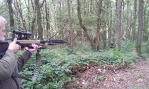 Dan shooting