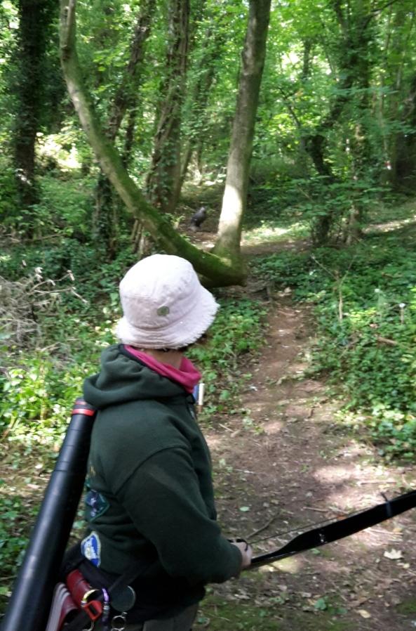 Sharon shooting 3D owl between trees