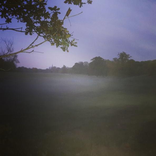 Mist appearing as dusk falls