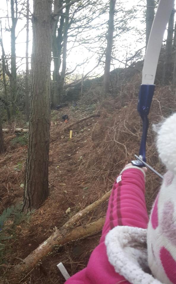 Gayle shooting 3D badger target