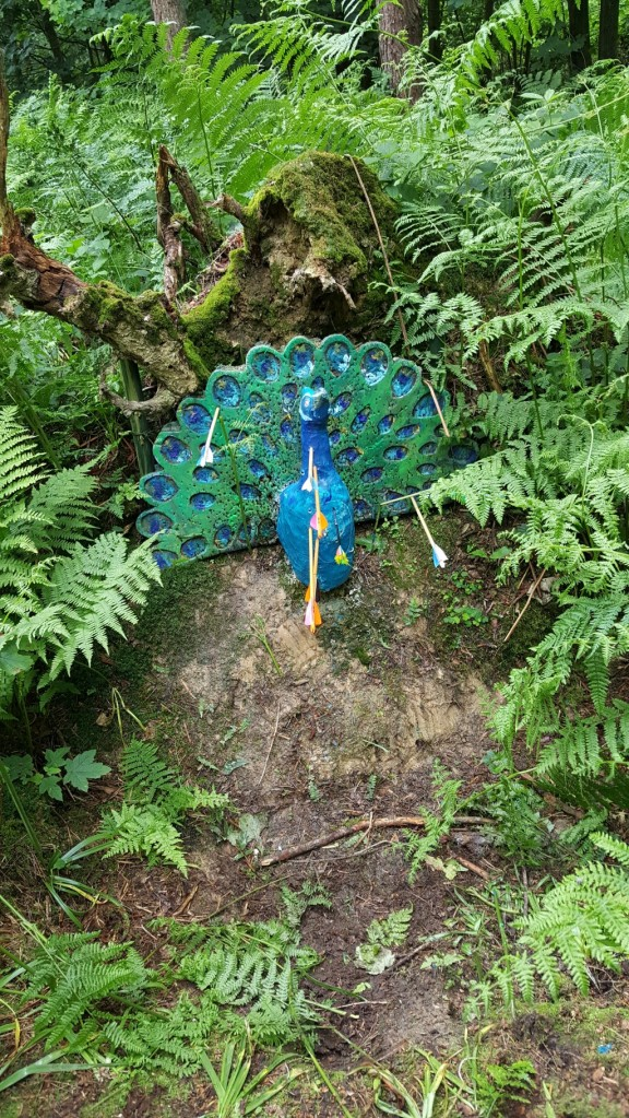 3D peacock - should have come with a warnings as paint was still wet