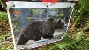 Bear target face