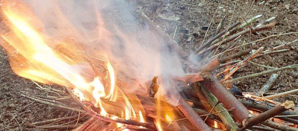 6 bundle Fire