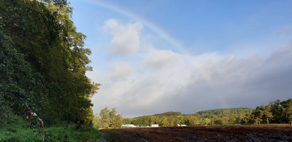 Rainbow over site